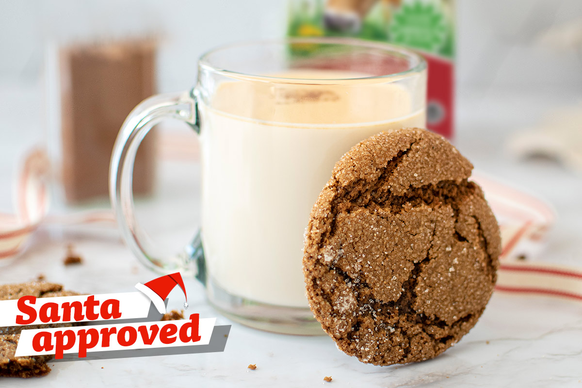 Ginger Molasses Cookies with Pumpkin Spice Milk
