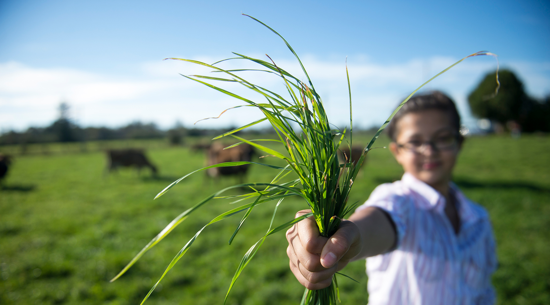 Young girl holding handful of green grass.