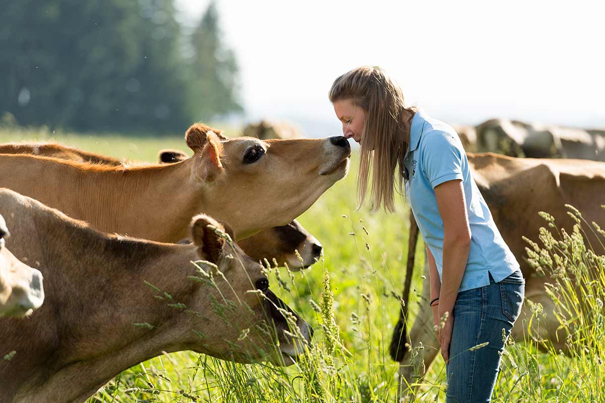 A young woman and a friendly Jersey cow touch noses in a sweet moment outside in tall pasture grasses.