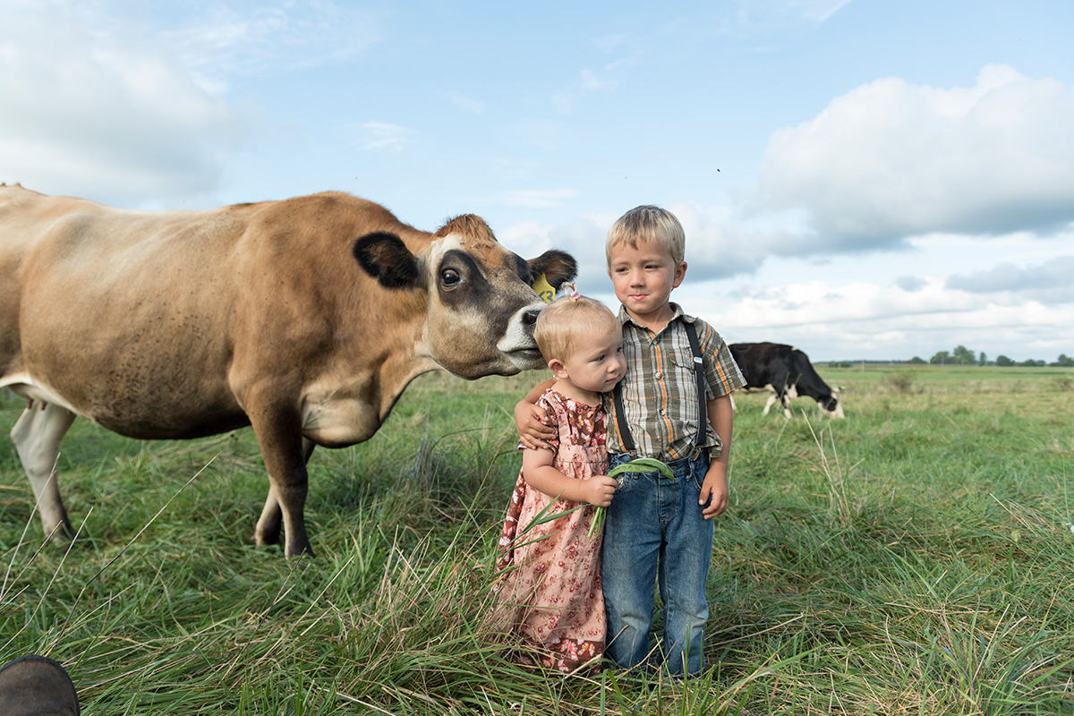 A cow sniffs the back of a little girl's head as her brother hugs her.