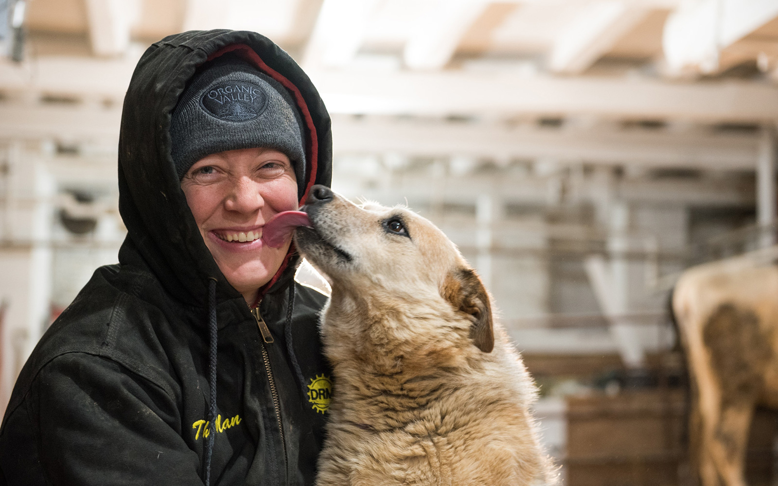Amy Koenig gets a wet kiss from the Jumpin' Jerseys farm dog.