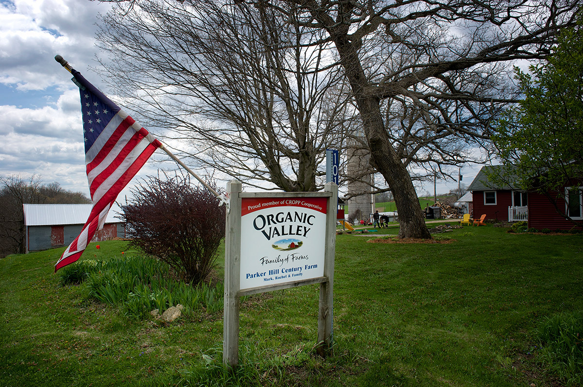 <p>American flag flying on the Parker Farm in Wisconsin.</p>