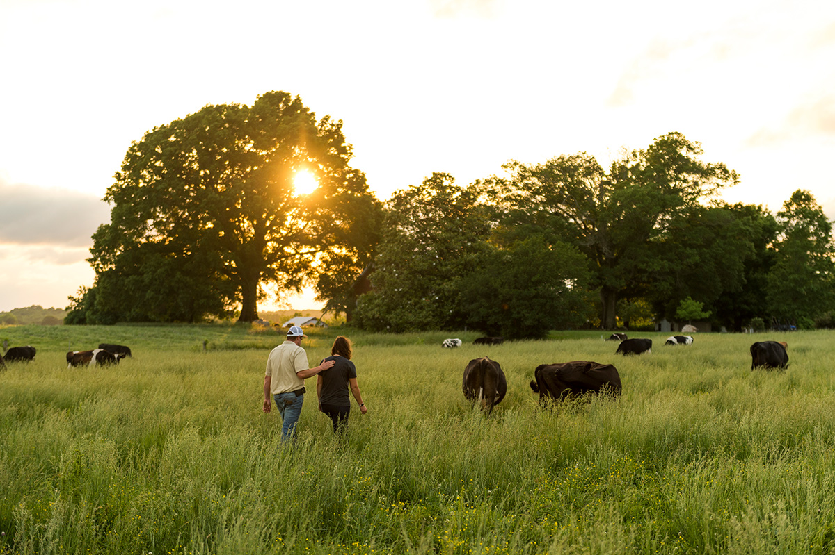 Couple walks through pastures of organic farm at dusk.