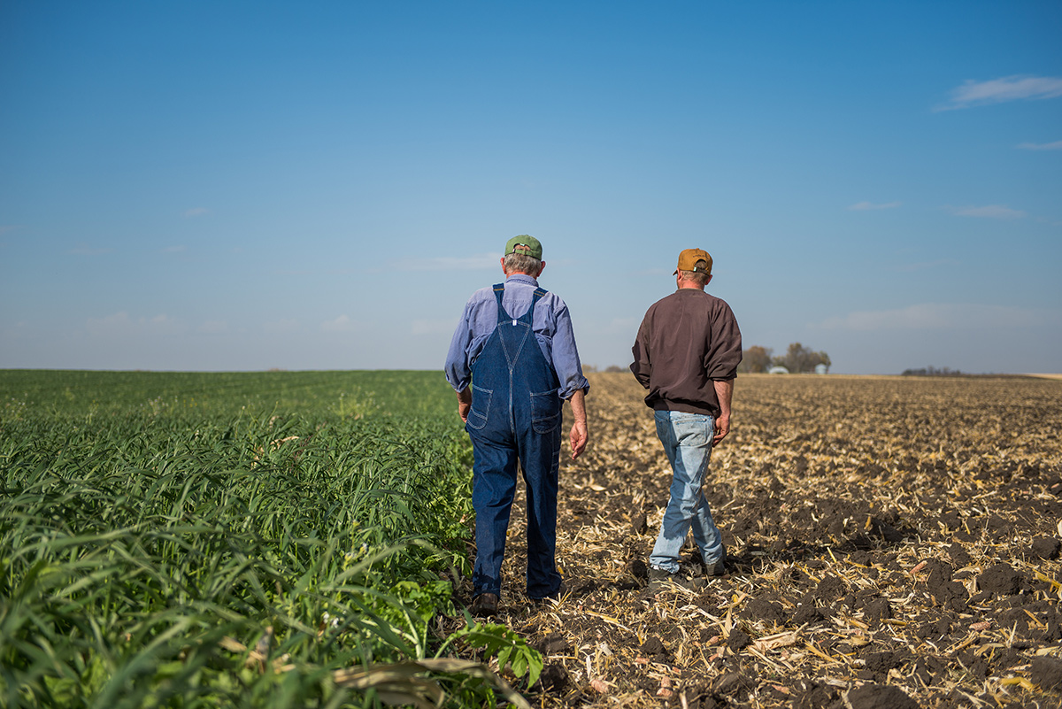Two men walk in a field where half has been tilled and half is growing a lush green crop.