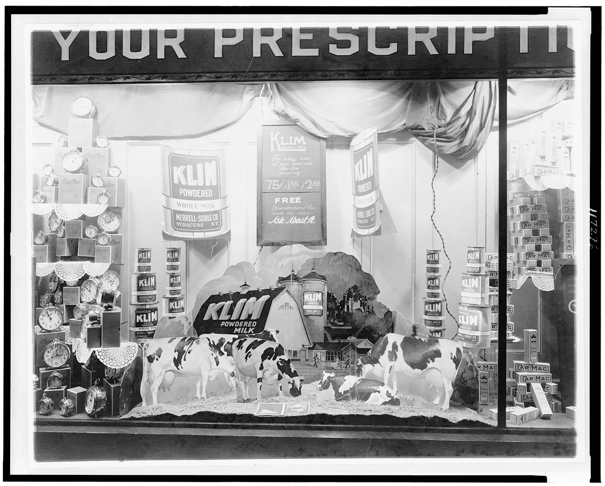 A black and white photo of an early 20th century drugstore display showing model cows and a miniature farm with signs for Klim powdered milk.