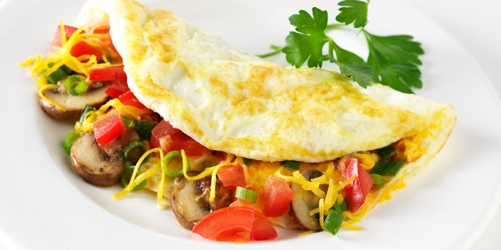 Egg white omelette folded over sauteed mushrooms, tomatoes and green onions with shredded cheese and a sprig of cilantro for garnish.