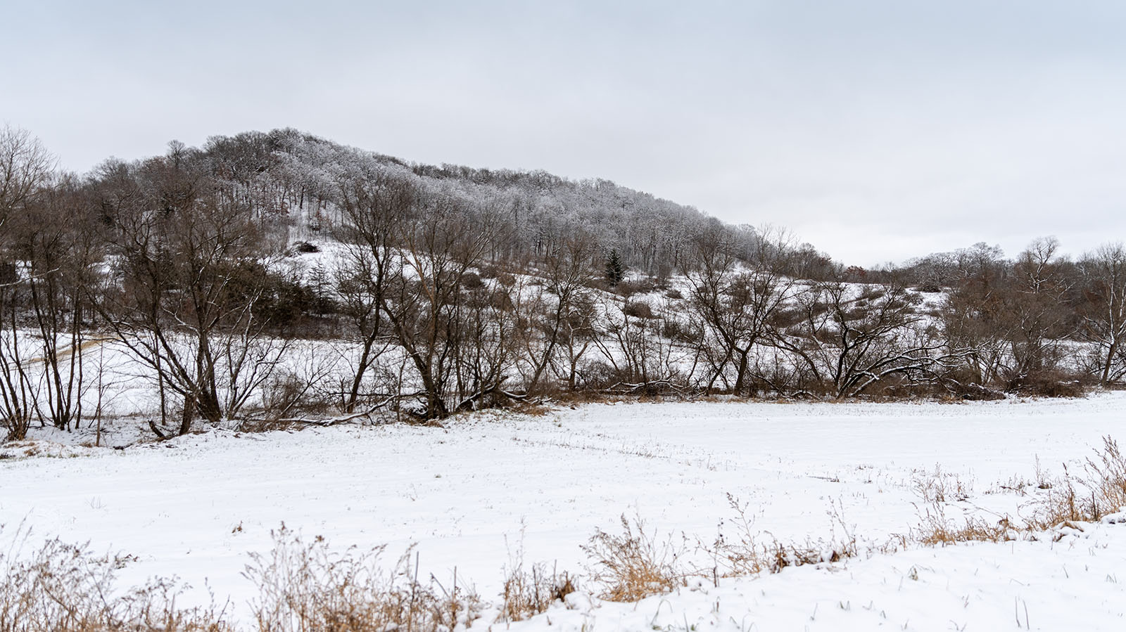 Snow-covered hills overlooking the Ralph-Hemsteads' Wisconsin farm