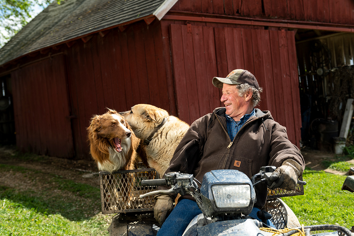 A middle-aged man sits on a four-wheeler and laughs at his two dogs sitting on the back.