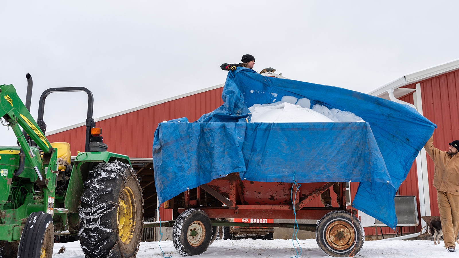 Hauling a snow-covered tarp off a bin of bedding.
