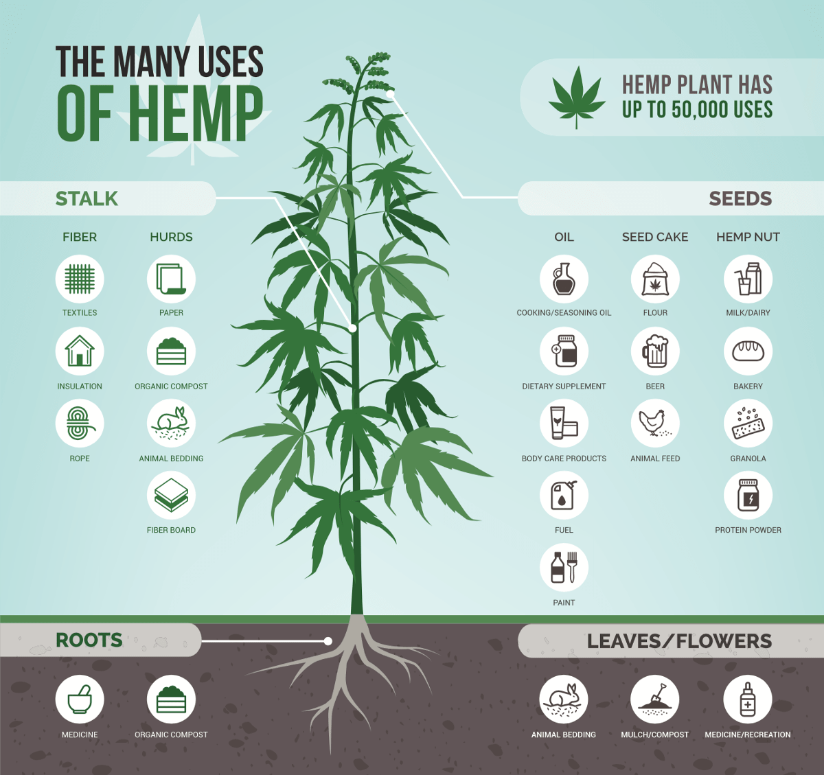 """<p>This chart from <a href=""""https://cbdorigin.com/what-is-hemp"""" target=""""_blank"""">CBD Origin</a>shows the wide range of products that can come from every part of the hemp plant.</p>"""