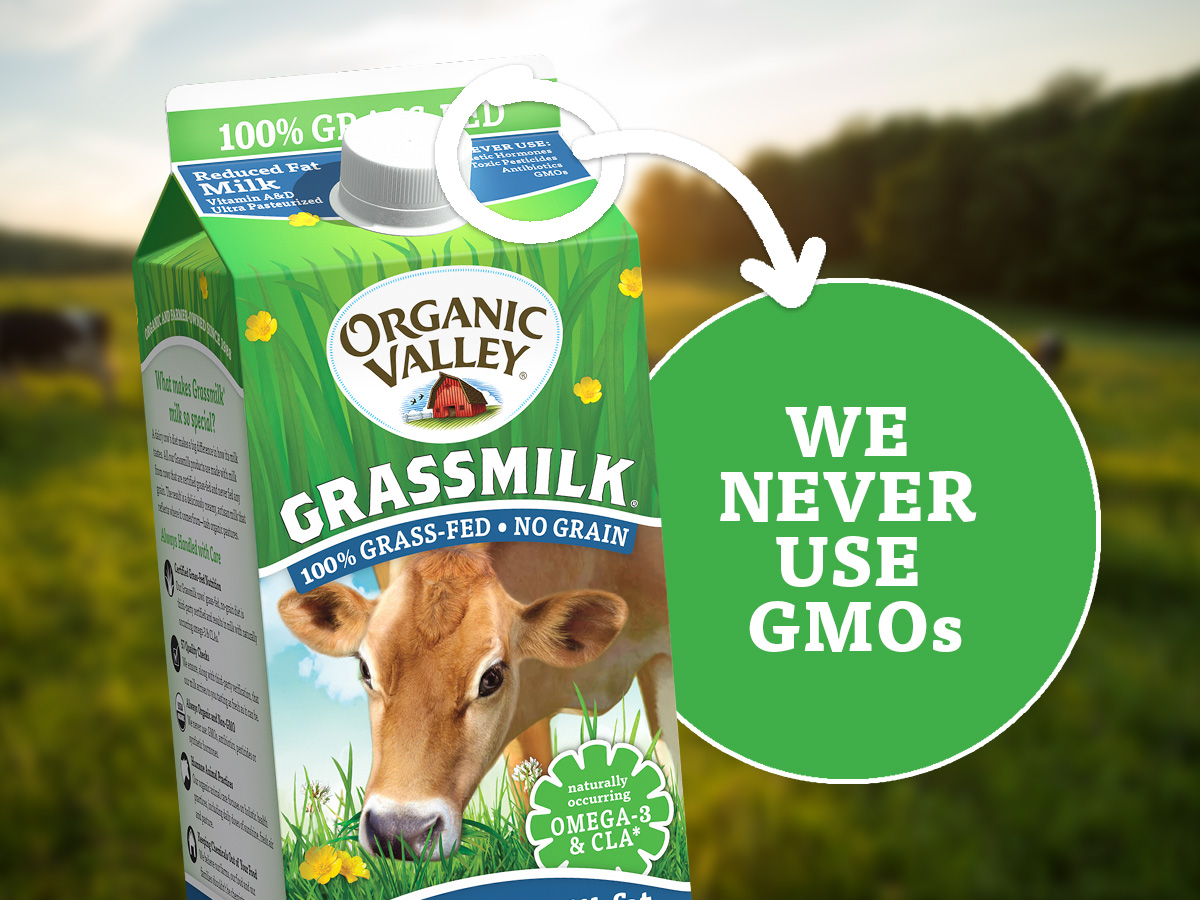 """Organic Valley milk carton that reads """"We Never Use GMOs."""""""