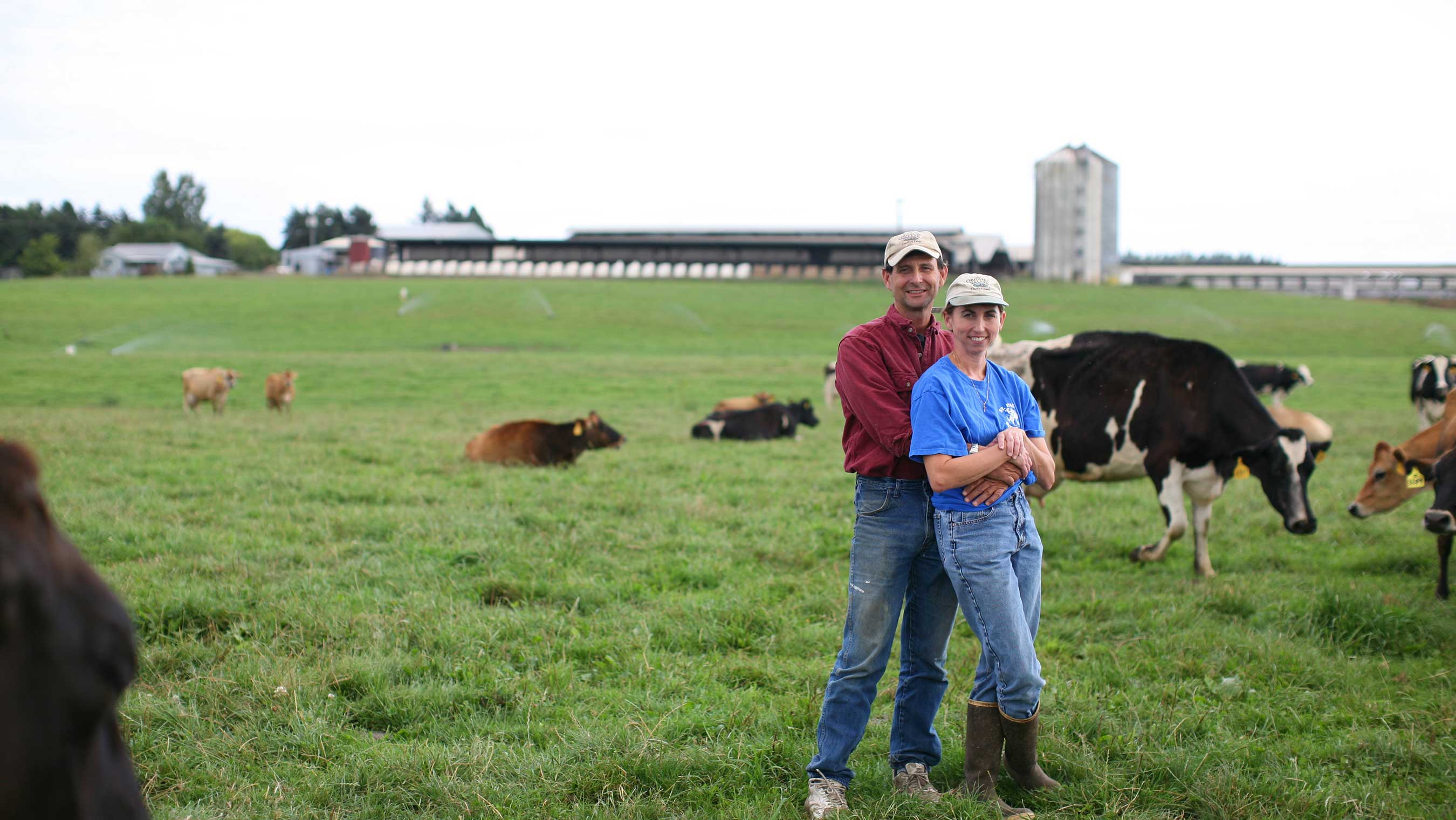 Organic Valley Farmer and Board Member to Testify Before Congress