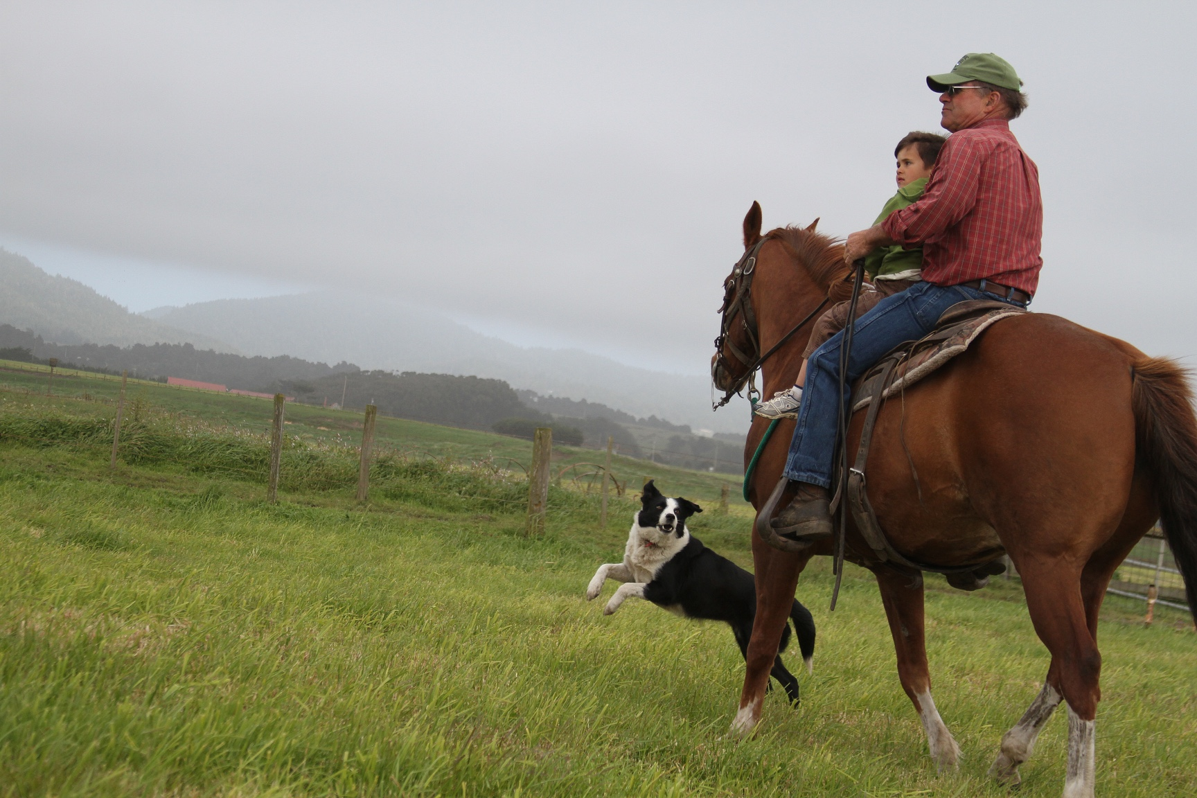 A man holds a child while riding his horse as the farm dog jumps for joy.