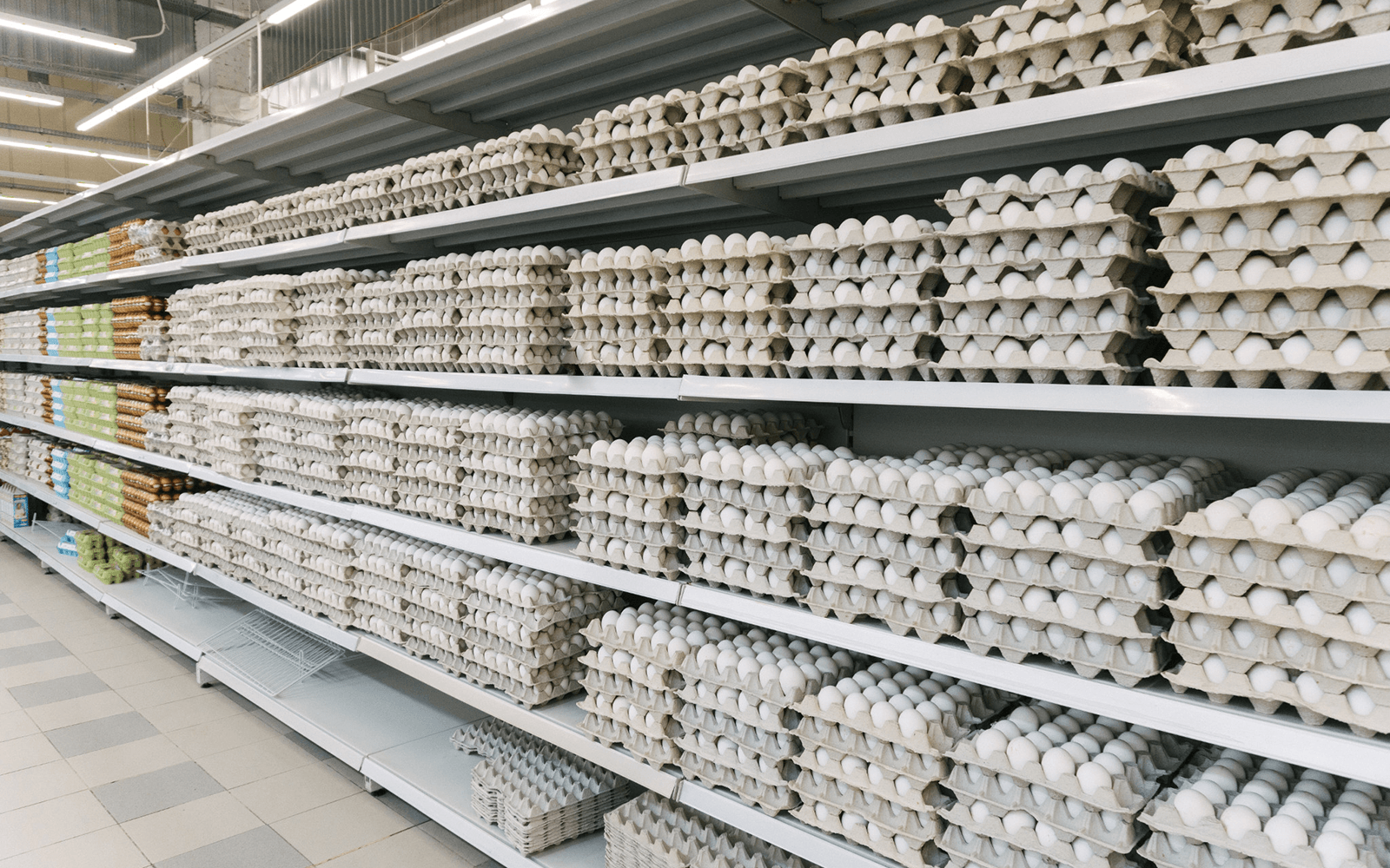 A long row five shelves high of unrefrigerated eggs in an overseas grocery store.