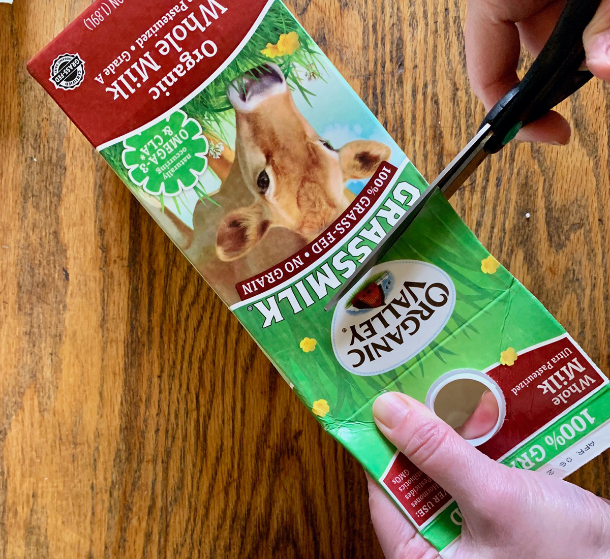 Cutting the Organic Valley Grassmilk carton to hold dirt and seeds.