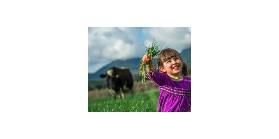 Same view of girl holding grass, slightly zoomed in on the creepy cow looming in the background.