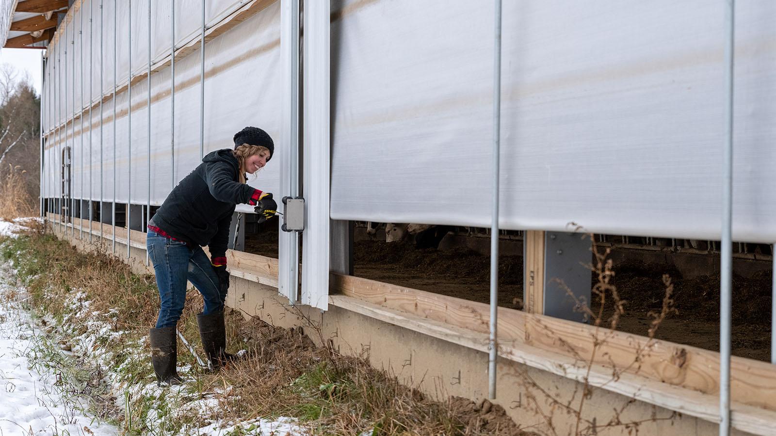 Putting the barn's sidewalls down.