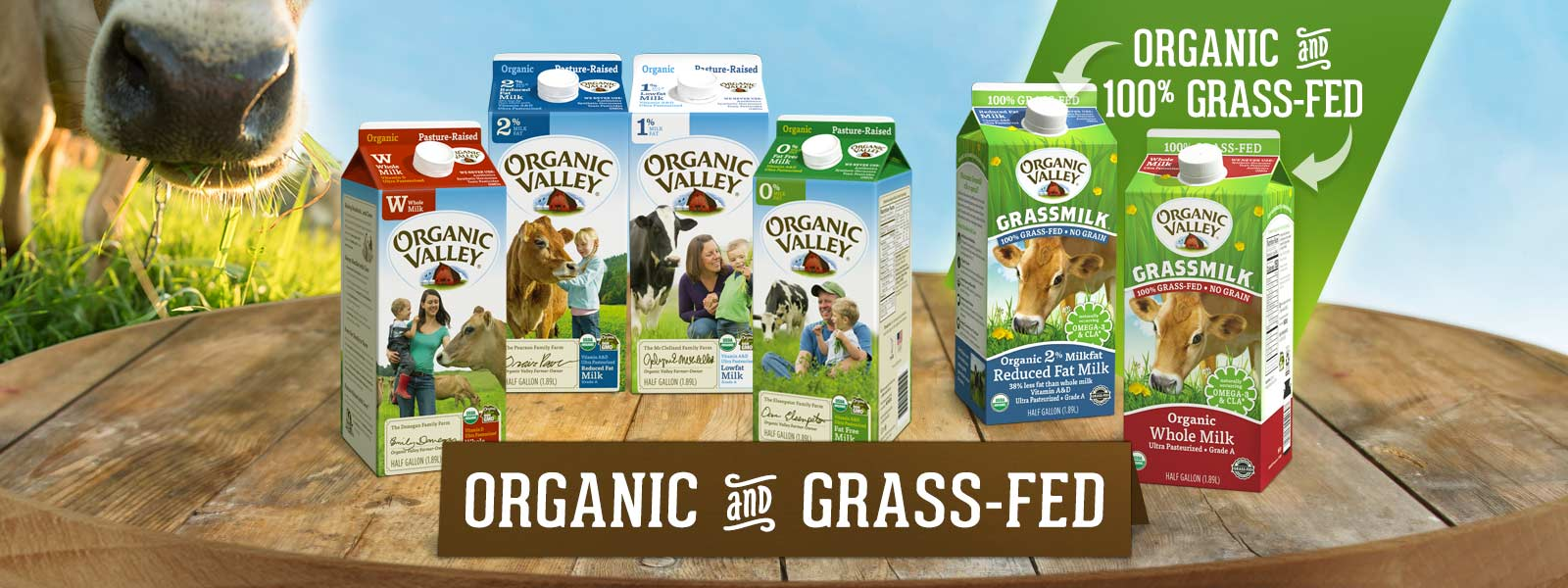 Graphic showing which Organic Valley milk options are organic and grass-fed.