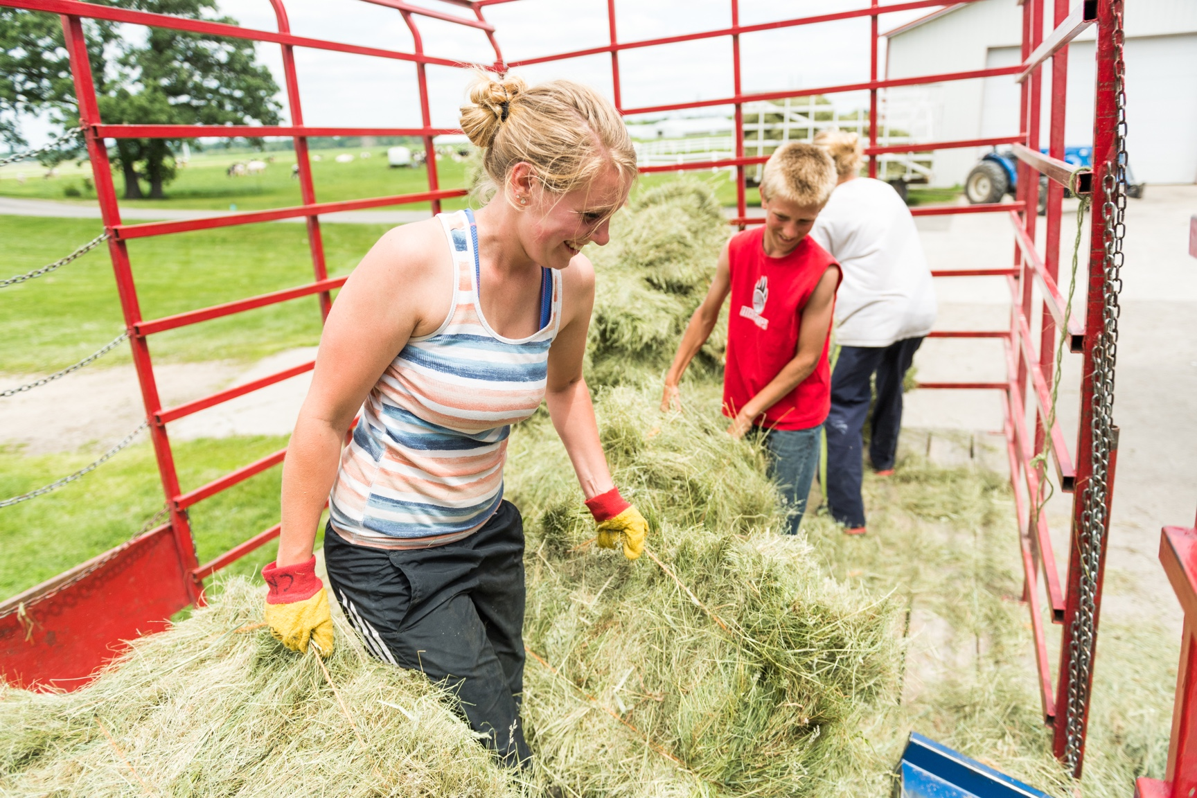 A woman farmer throws grass hay from a trailer into a chute.
