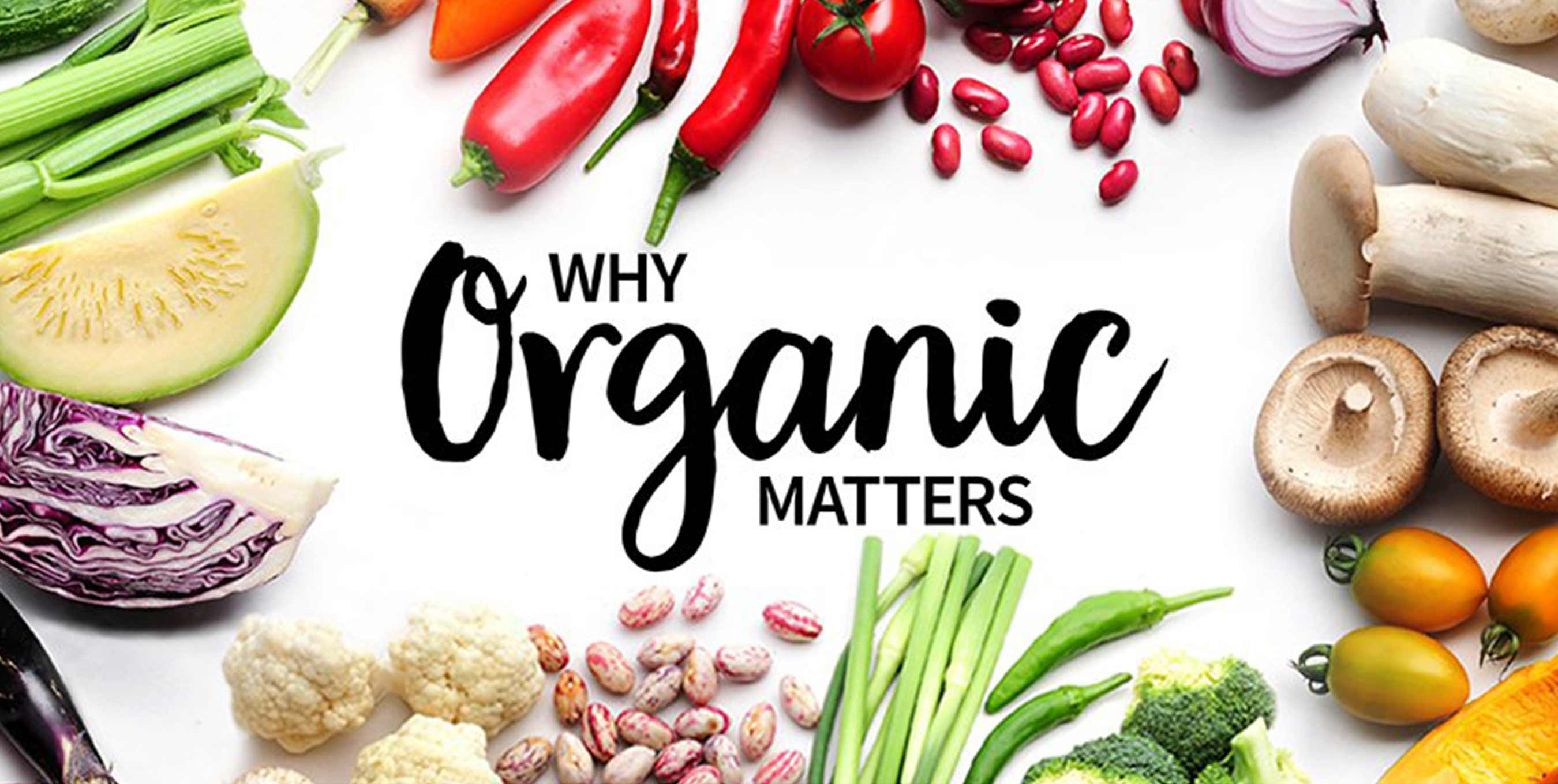 Why Buying Organic Is A Really Big Deal If You Care About Animal Welfare