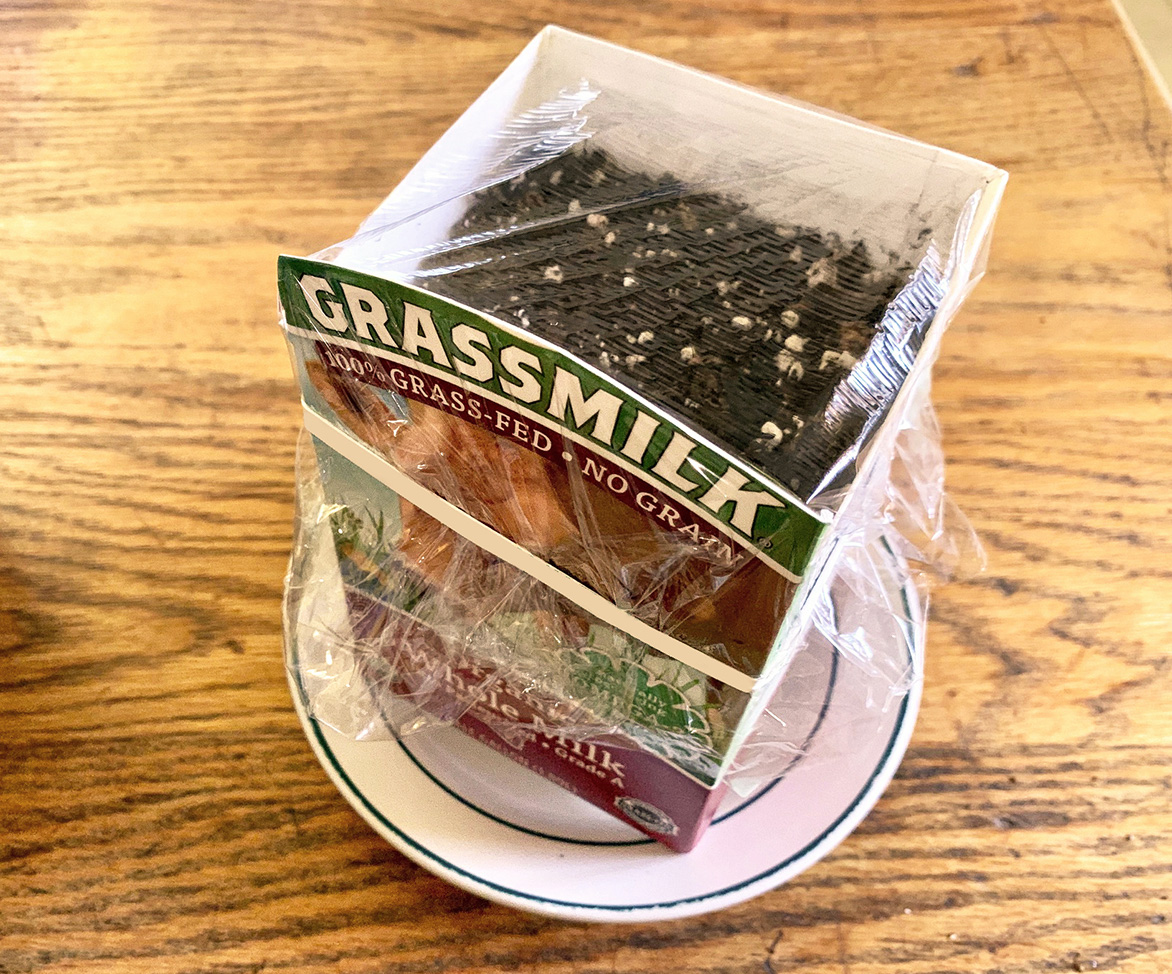 Organic Grassmilk carton ready to start growing seeds and covered in plastic wrap for ideal growing environment.