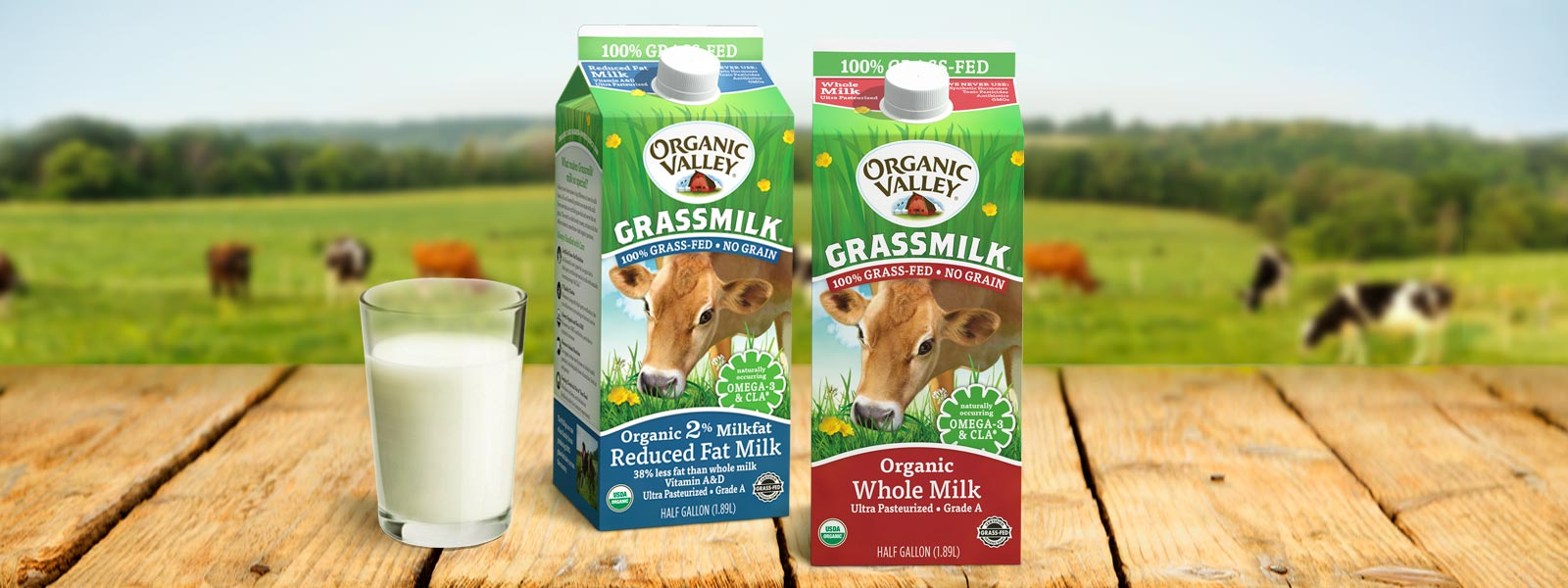 Two cartons of Organic Valley Grassmilk on an outdoor table.