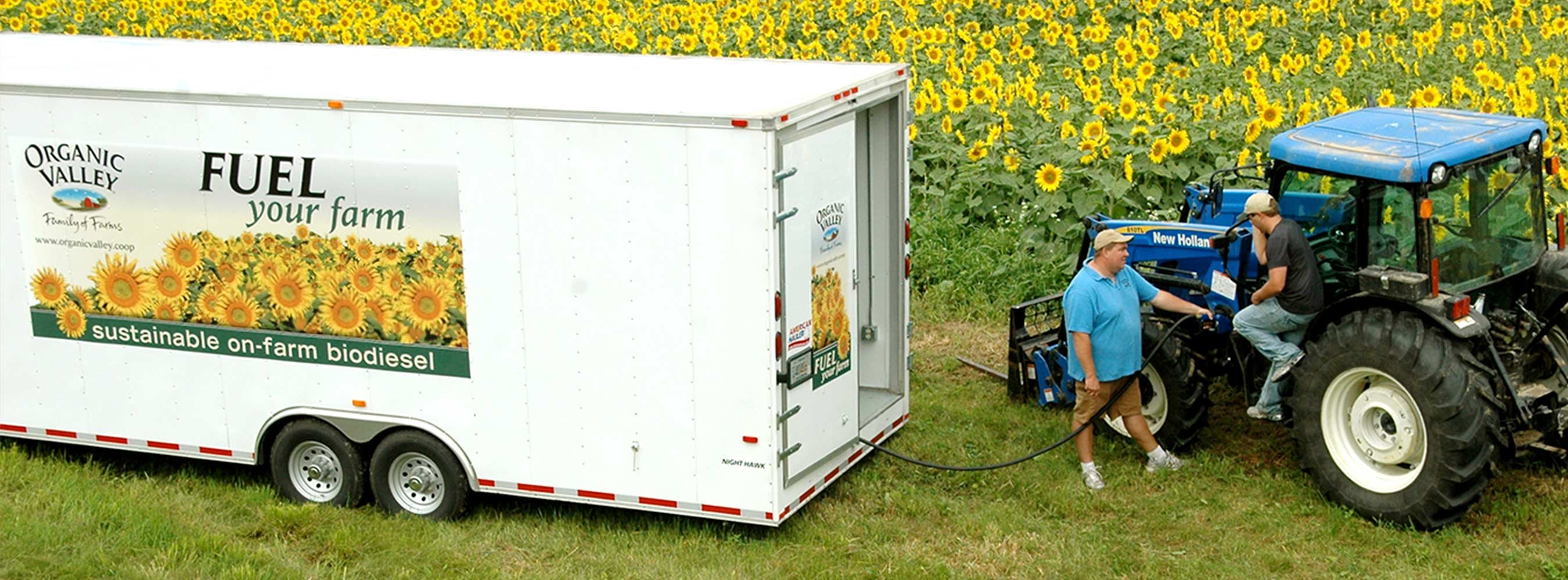 A farmer getting his tractor refueled with sustainable on-farm biodiesel in front of a field of sunflowers.